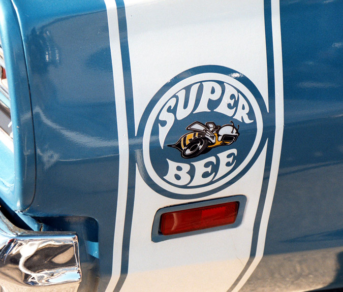 Super Bee Circle with Bee