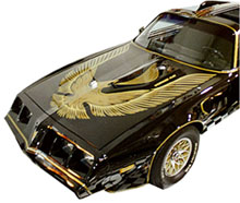 1981 Pontiac Trans Am - Individual Decals