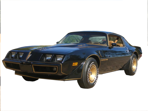 1979-81 Pontiac Trans Am - Special Edition Individual Stripes & Decals