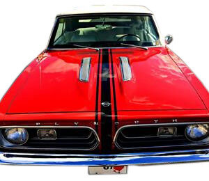 1967 Barracuda Hood, Roof Trunk stripe kit