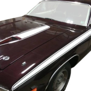 Graphic Express - 1973 Plymouth Road Runner Complete