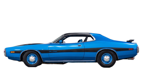 1973 Charger Body side stripe